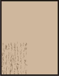 backgroundpetsym1.jpg