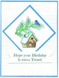 birdhousebdaytweet1sl18.jpg