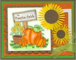 pumpkinpatchflowerkm17.jpg