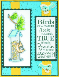 stormybirdfeederkm18.jpg